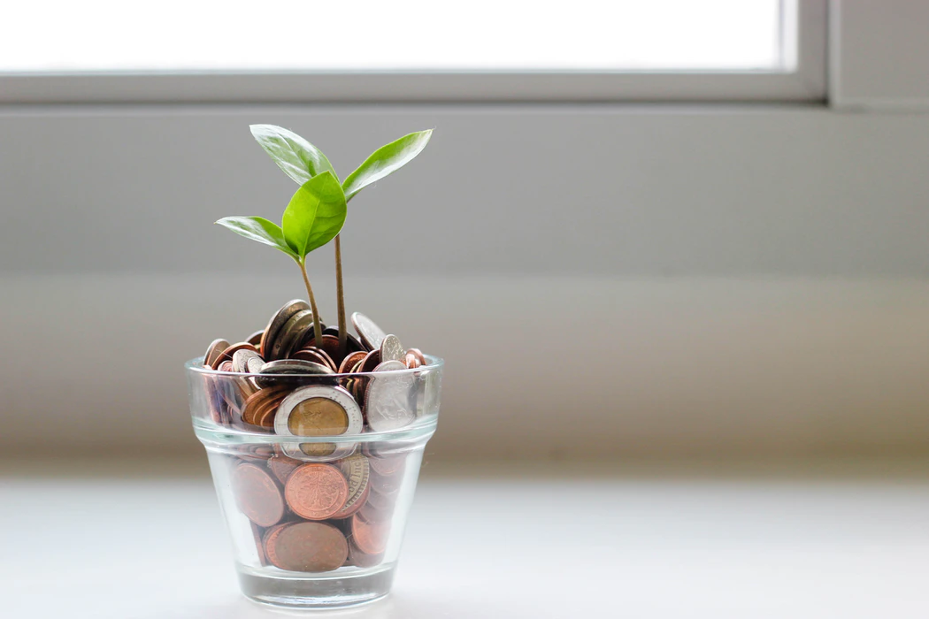 Money with plant growth
